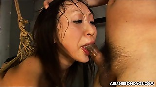 Amateur, Asian, BDSM, Big Ass, Big Boobs, Blowjob, Hairy
