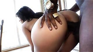 Big Ass, Big Cock, Exotic, Latina