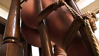Asian, Babe, BDSM, Brunette, Fingering, Hairy, Natural, Sex Toys